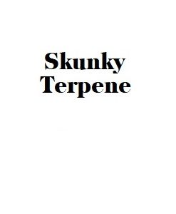Skunky Terpene